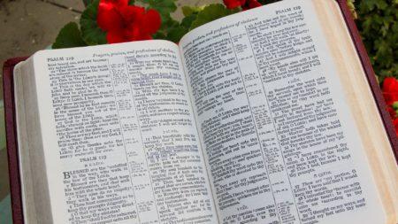 hristiane-kuby-ispytyvayut-ostryj-defitsit-bumazhnyh-izdanij-biblii-2