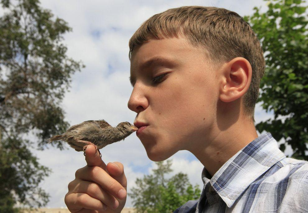 boy-and-a-sparrow-are-best-friends-1
