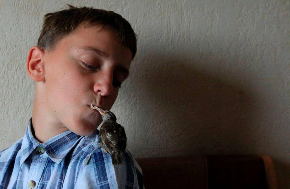 boy-and-a-sparrow-are-best-friends-5