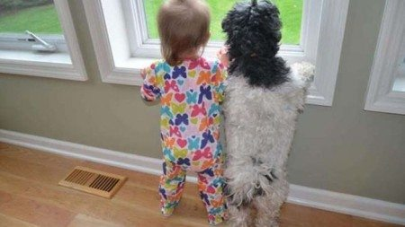friendship-between-children-and-animals-1