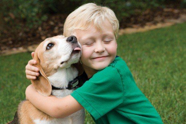 friendship-between-children-and-animals-15