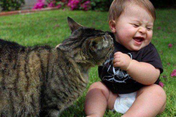 friendship-between-children-and-animals-16