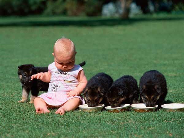 friendship-between-children-and-animals-17