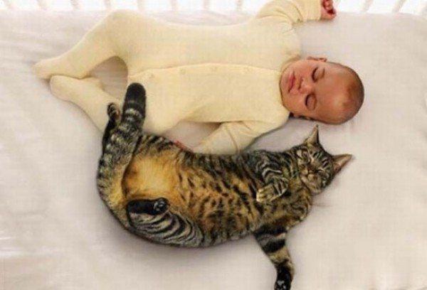 friendship-between-children-and-animals-18