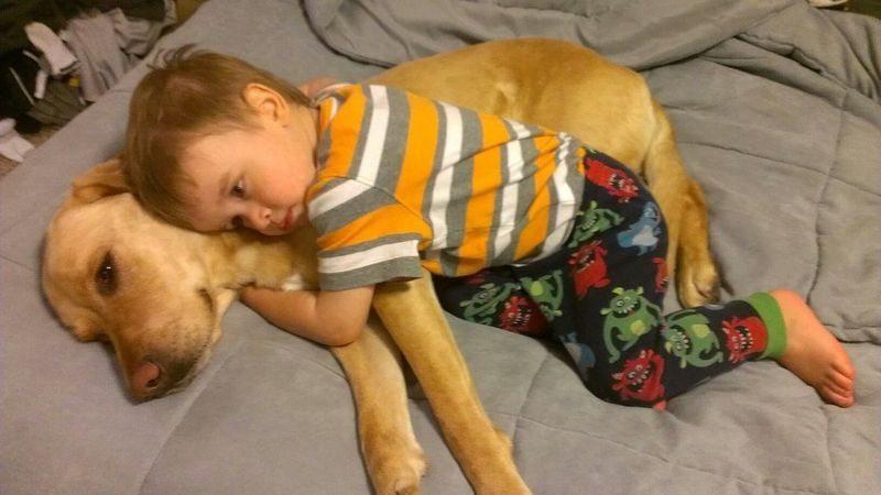 friendship-between-children-and-animals-20
