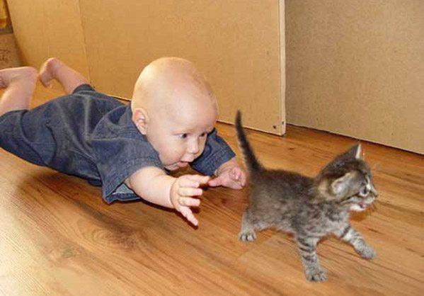 friendship-between-children-and-animals-3