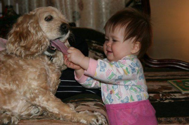 friendship-between-children-and-animals-6