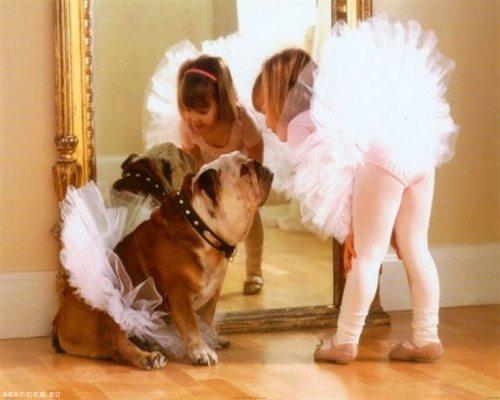 friendship-between-children-and-animals-8