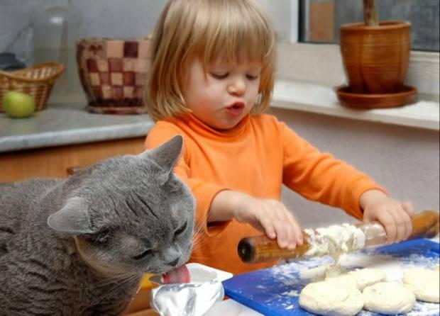 friendship-between-children-and-animals-9