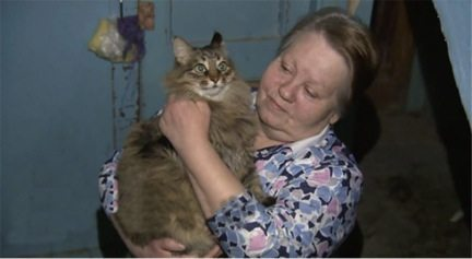 homeless-cat-saved-a-newborn-baby-from-death-3