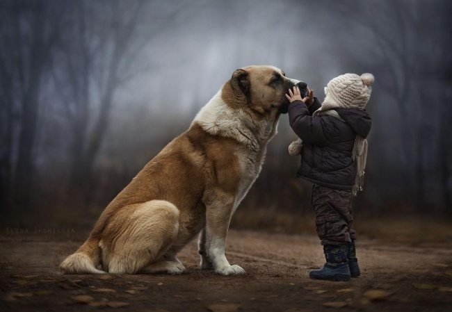 Photographs-of-countryside-children-and-animals-11