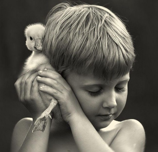 Photographs-of-countryside-children-and-animals-13