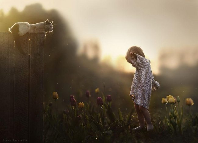 Photographs-of-countryside-children-and-animals-14