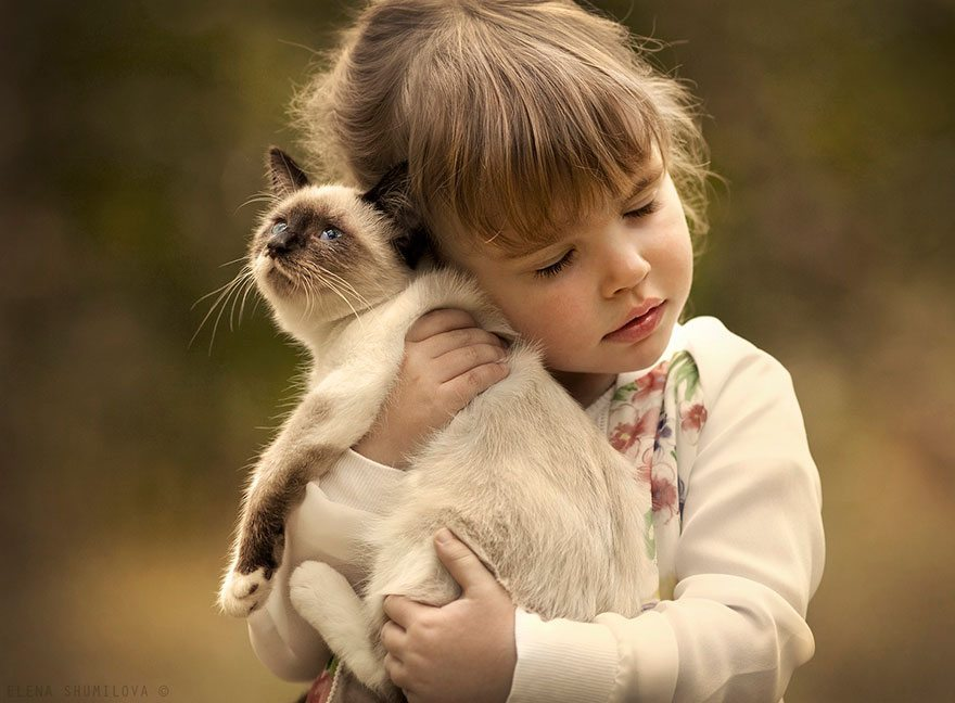 Photographs-of-countryside-children-and-animals-16