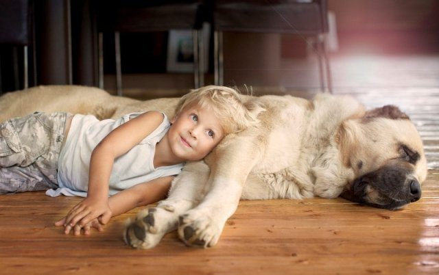 Photographs-of-countryside-children-and-animals-19