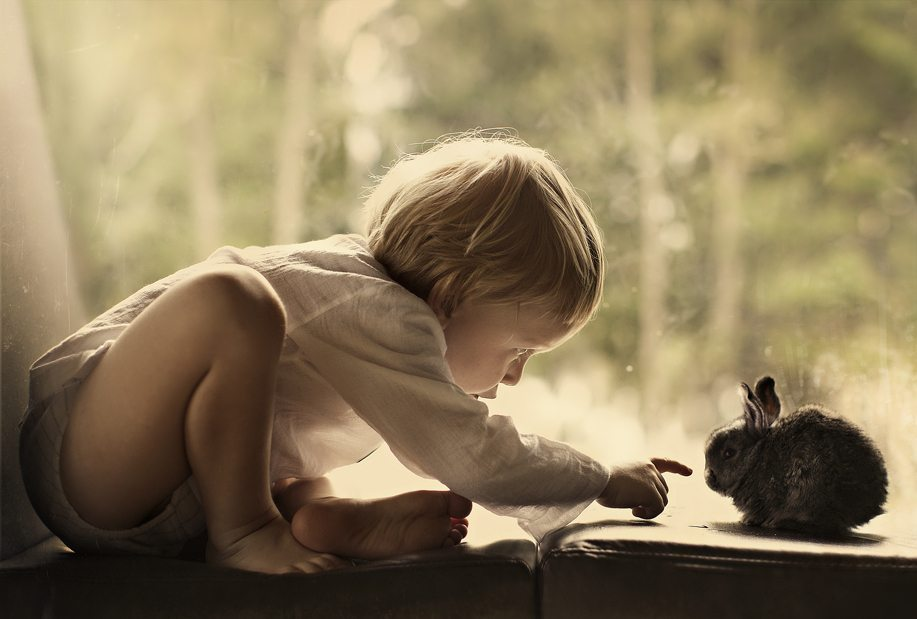 Photographs-of-countryside-children-and-animals-2
