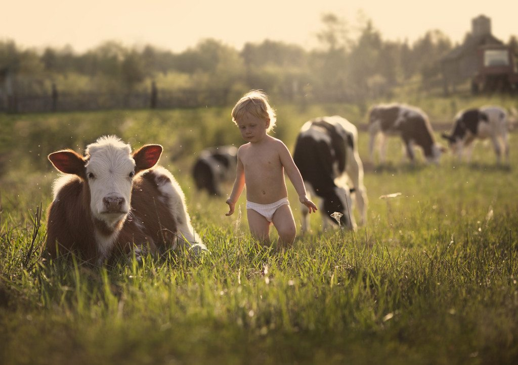 Photographs-of-countryside-children-and-animals-3