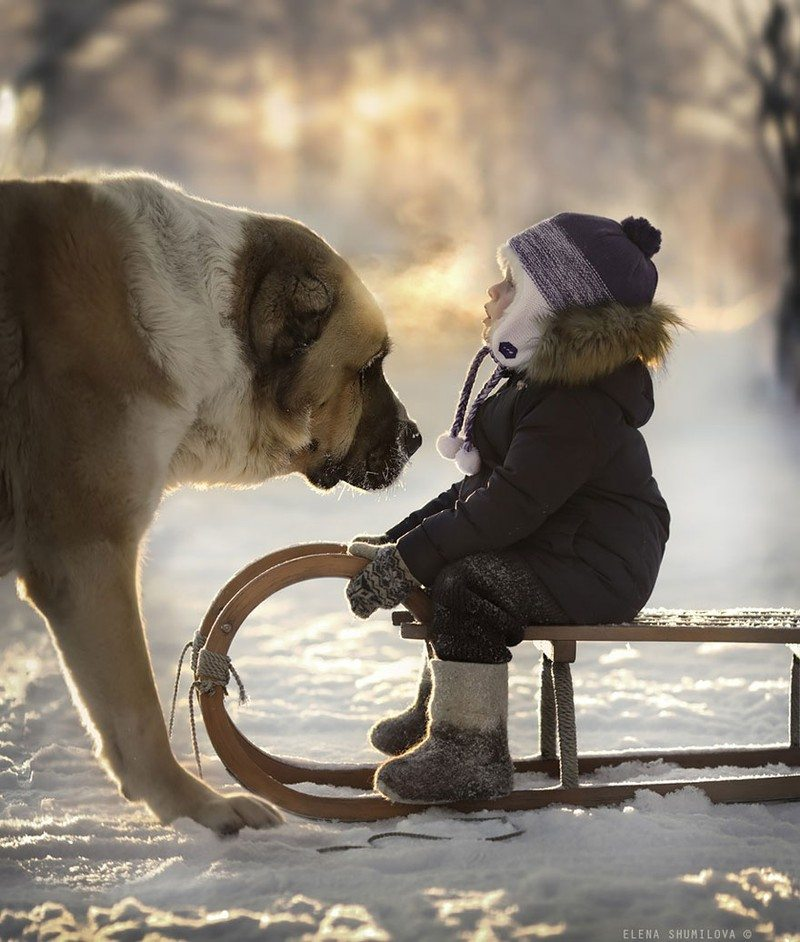 Photographs-of-countryside-children-and-animals-7