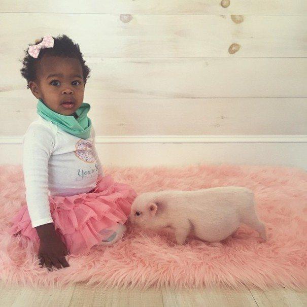 Unusual-pet-2-year-old-girl-has-10