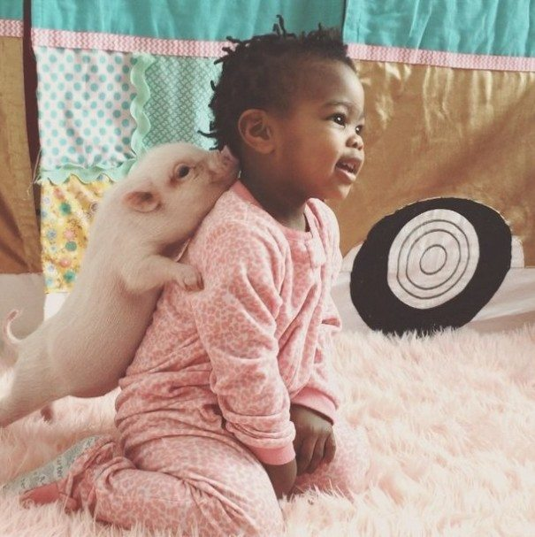 Unusual-pet-2-year-old-girl-has-6
