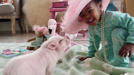 Unusual-pet-2-year-old-girl-has-7