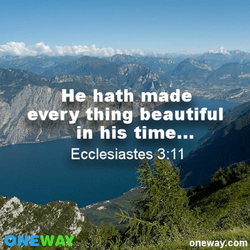 Ecclesiastes 3-11