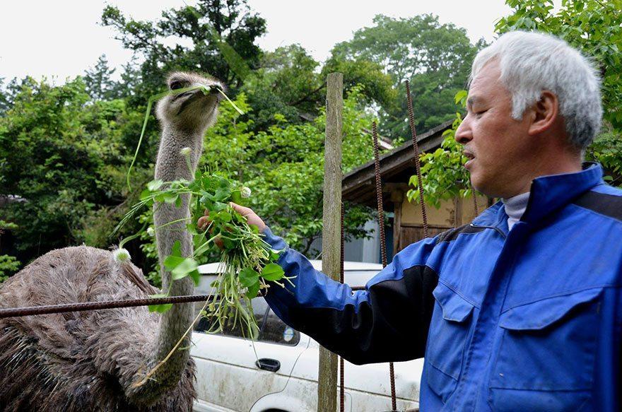Man-risks-his-life-to-save-animals-left-in-Fukushima-10
