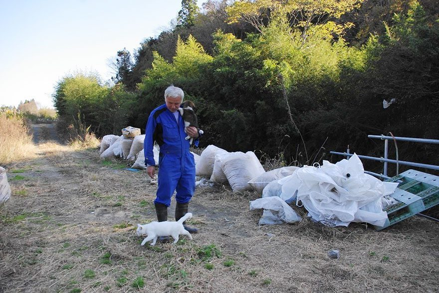 Man-risks-his-life-to-save-animals-left-in-Fukushima-11