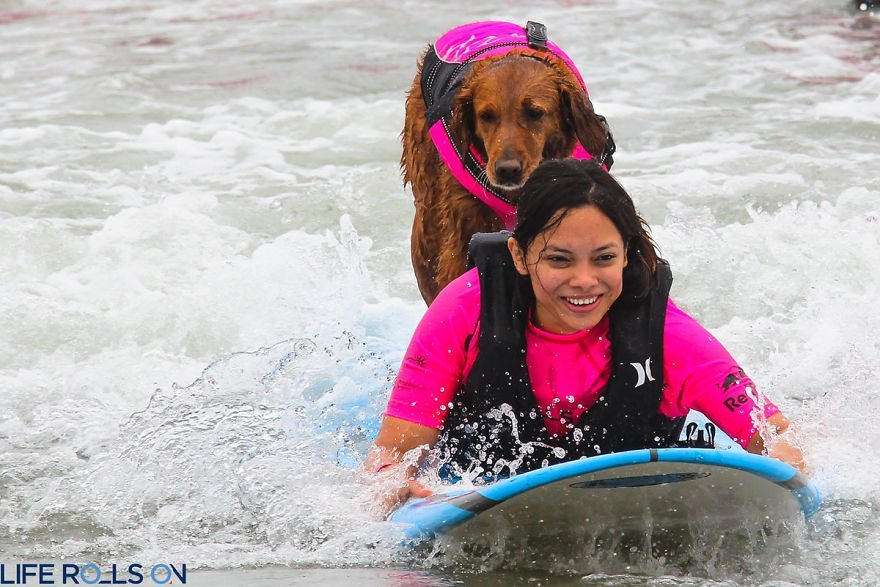 Dog-surfs-with-sick-people-and-helps-them-10