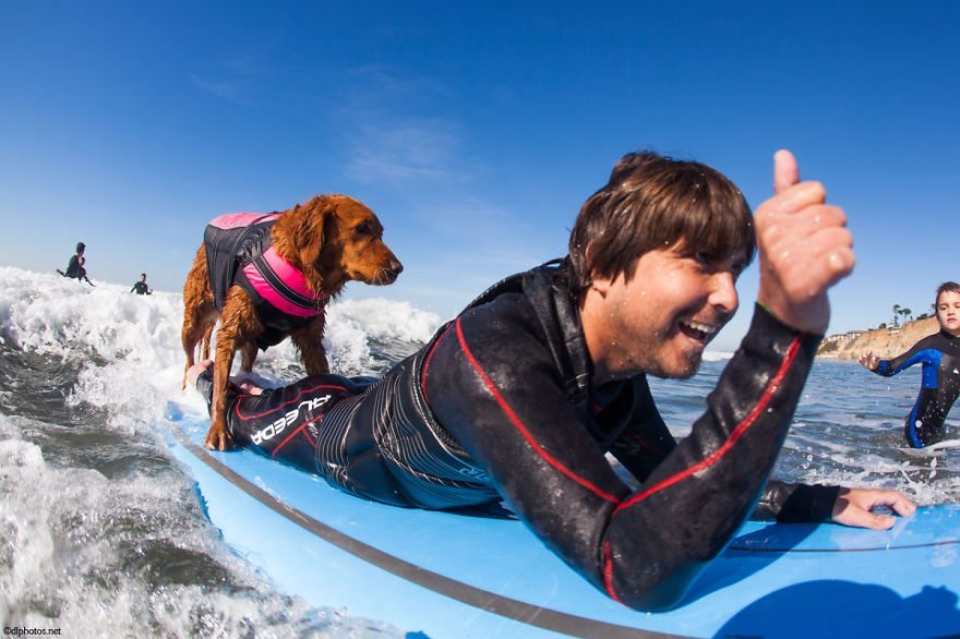 Dog-surfs-with-sick-people-and-helps-them-11