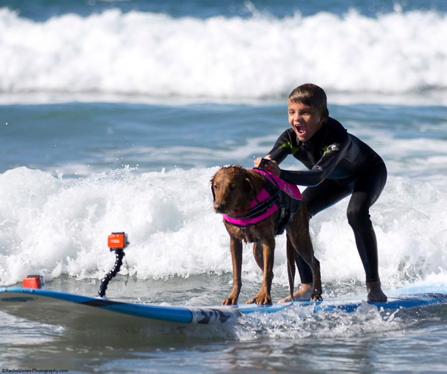 Dog-surfs-with-sick-people-and-helps-them-15