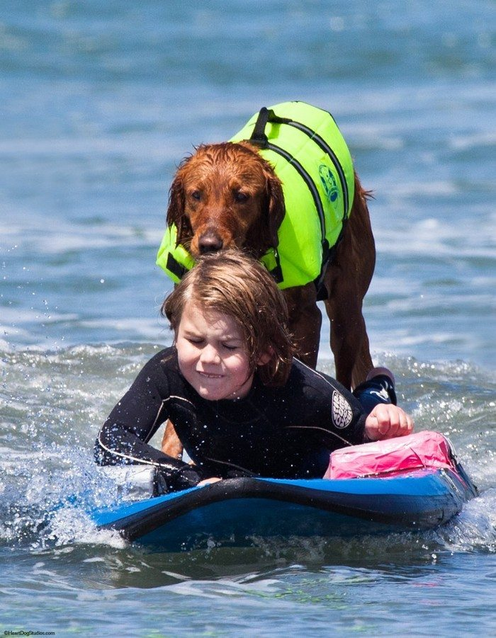 Dog-surfs-with-sick-people-and-helps-them-16