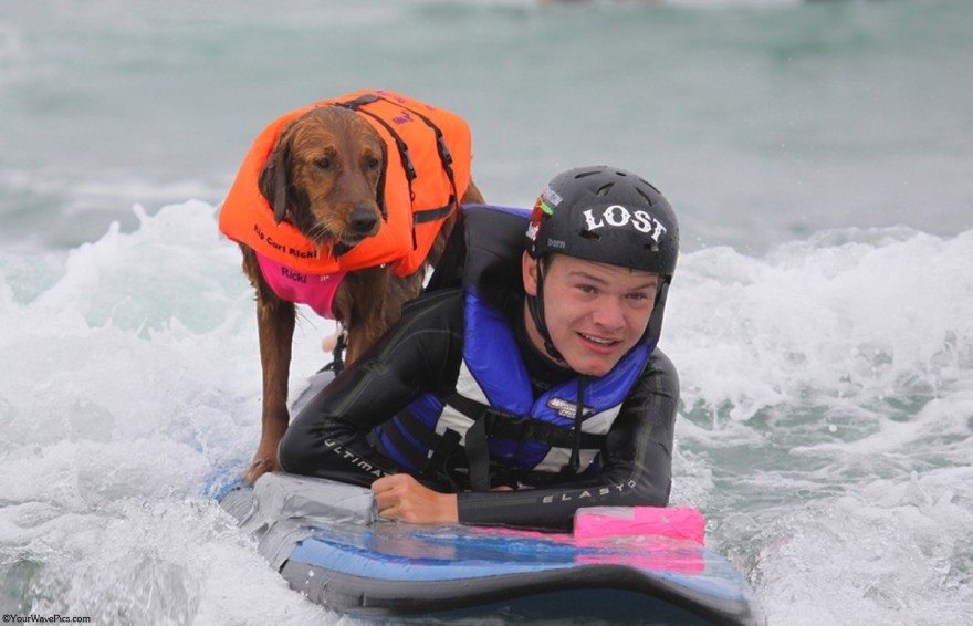 Dog-surfs-with-sick-people-and-helps-them-2