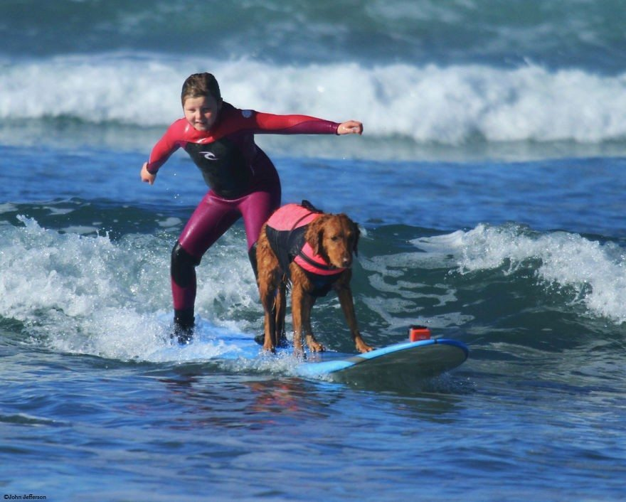 Dog-surfs-with-sick-people-and-helps-them-4