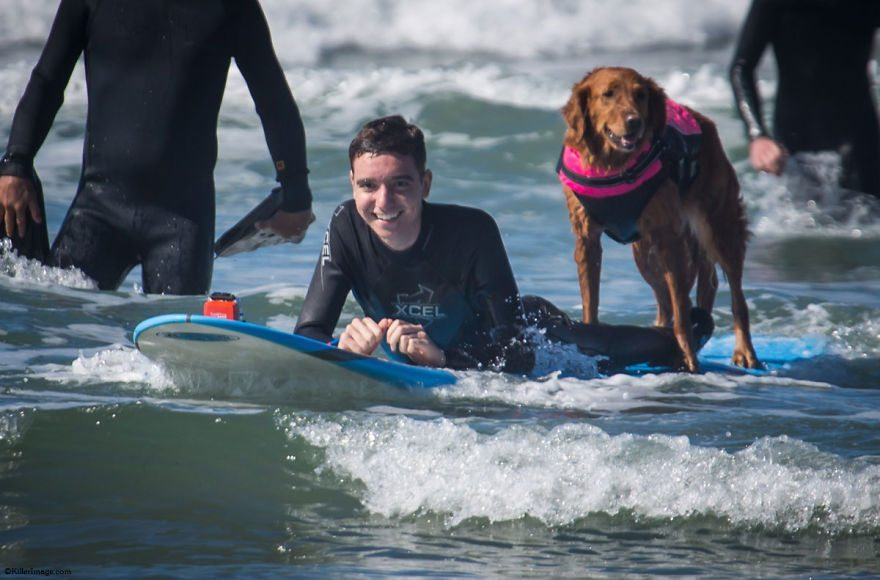 Dog-surfs-with-sick-people-and-helps-them-9
