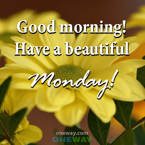 good-morning-have-a-beautiful-monday-2