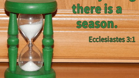 every-thing-season