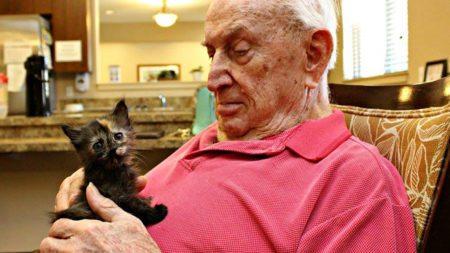 elderly-people-alzheimers-disease-care-newborn-kittens-unusual-project-arizona-3