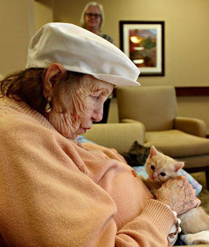 elderly-people-alzheimers-disease-care-newborn-kittens-unusual-project-arizona-5
