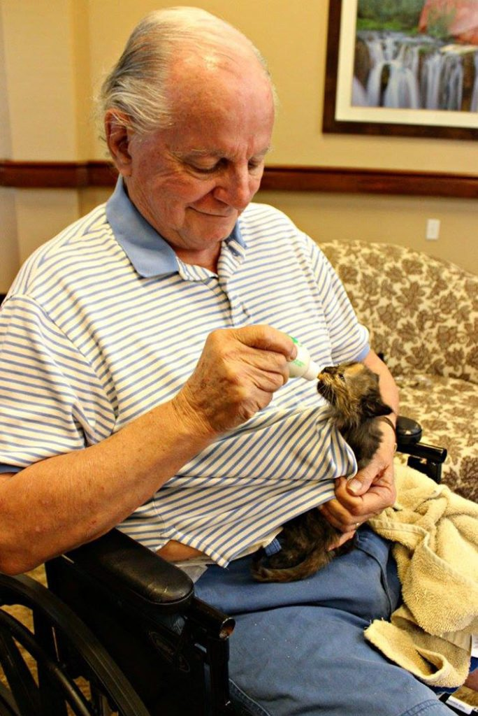 elderly-people-alzheimers-disease-care-newborn-kittens-unusual-project-arizona-6