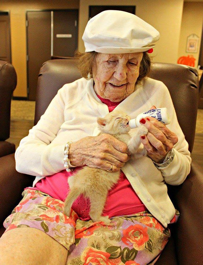 elderly-people-alzheimers-disease-care-newborn-kittens-unusual-project-arizona-7