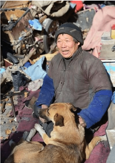 every-morning-dog-pushes-wheelchair-disabled-owner-market-story-canine-devotion-4