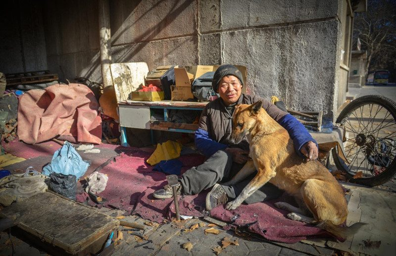 every-morning-dog-pushes-wheelchair-disabled-owner-market-story-canine-devotion-6