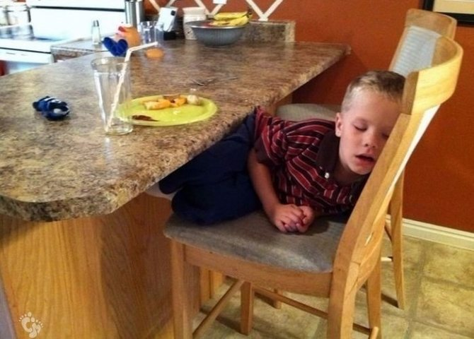 photos-proving-children-able-fall-asleep-unusual-places-19